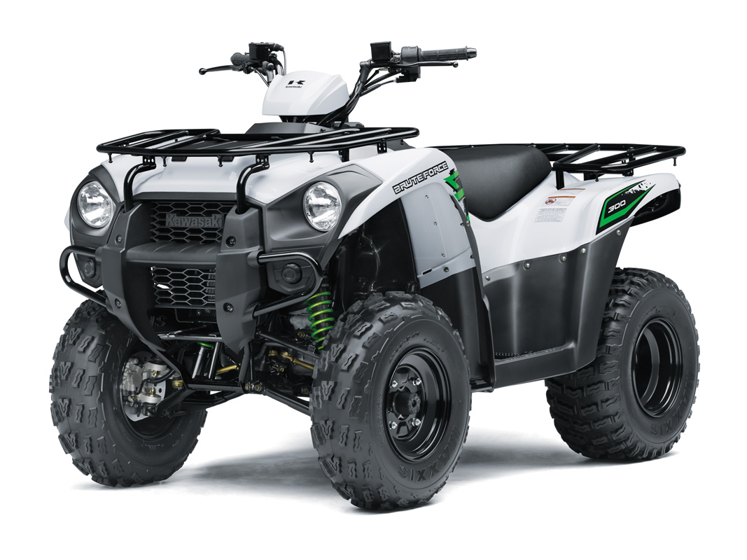 2018 Kawasaki Brute Force 300 in Sacramento, California