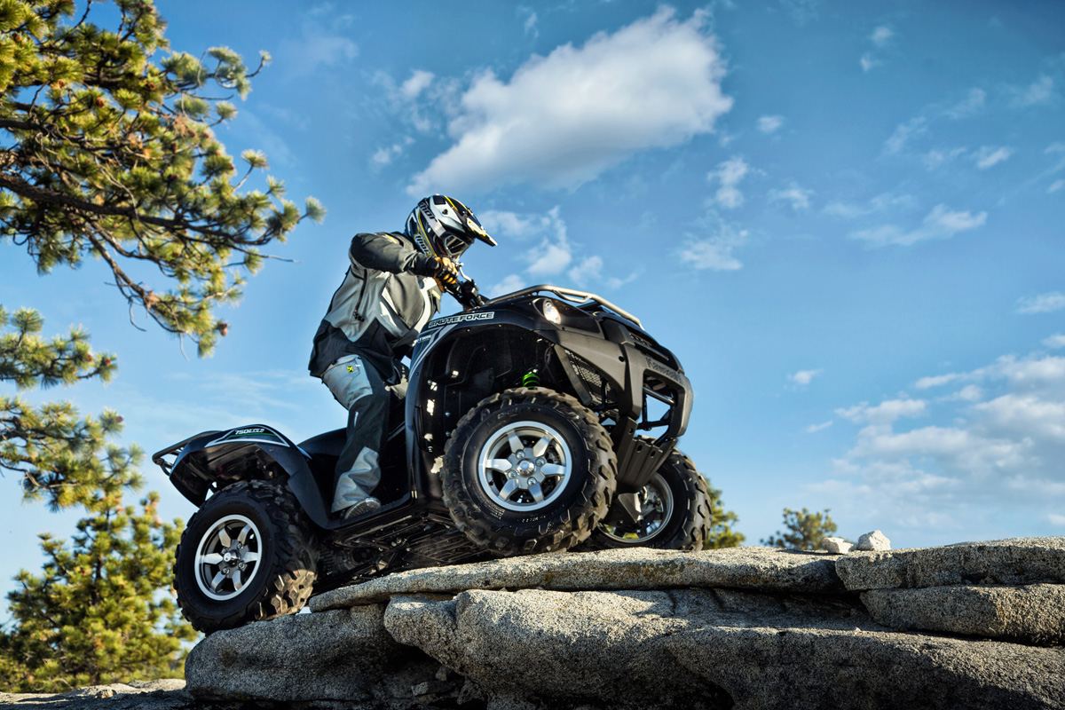 2018 Kawasaki Brute Force 750 4x4i EPS in Bellevue, Washington