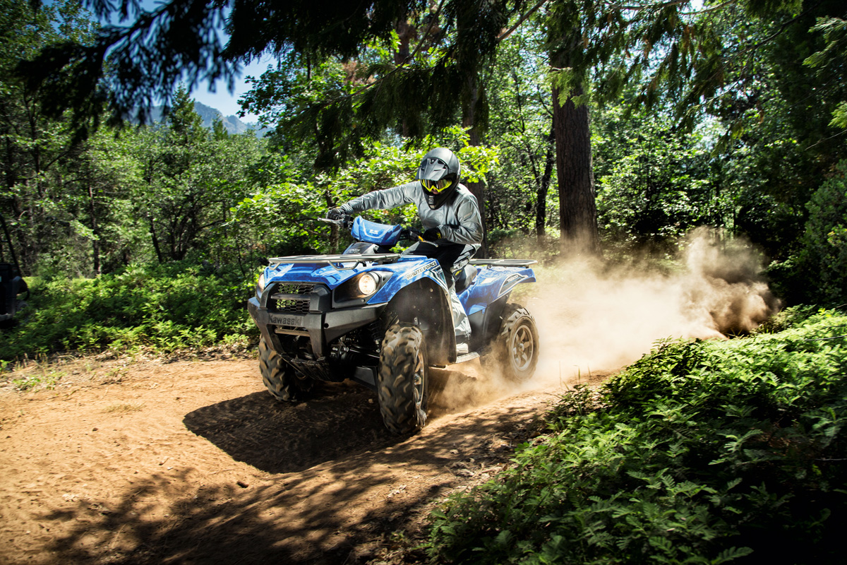 2018 Kawasaki Brute Force 750 4x4i EPS in Huron, Ohio