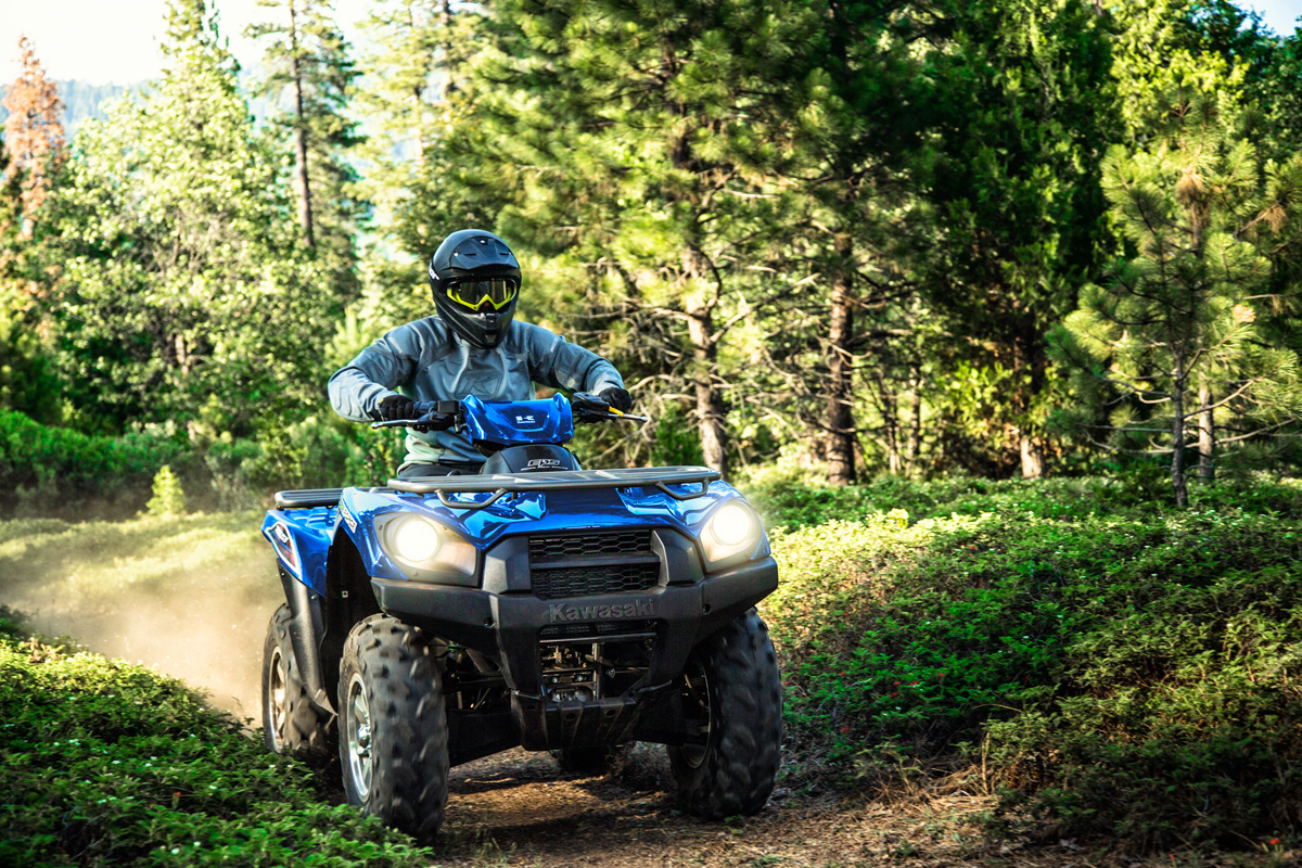 2018 Kawasaki Brute Force 750 4x4i EPS in Arlington, Texas