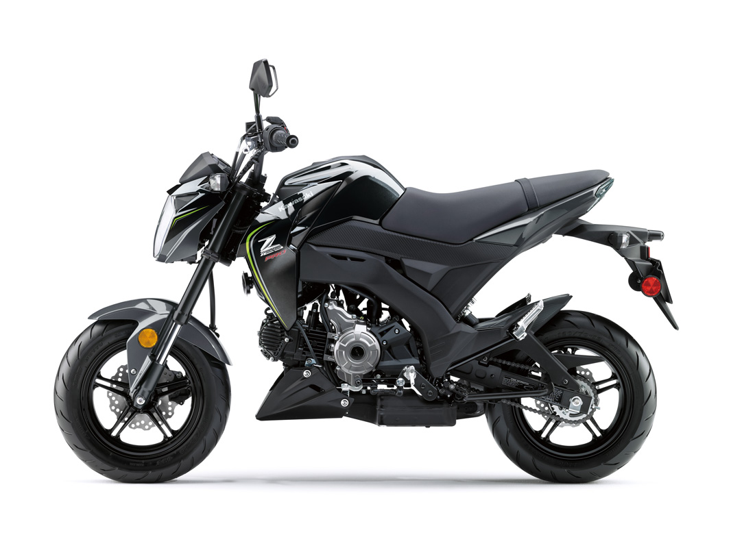 2018 Kawasaki Z125 Pro in Jamestown, New York