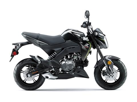 2018 Kawasaki Z125 Pro in Pompano Beach, Florida