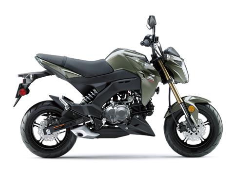 2018 Kawasaki Z125 Pro in Banning, California