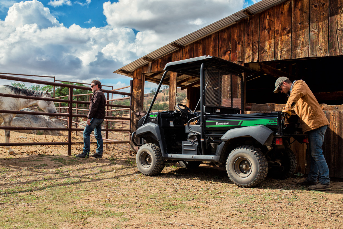 2018 Kawasaki Mule 4010 4x4 SE in Massillon, Ohio