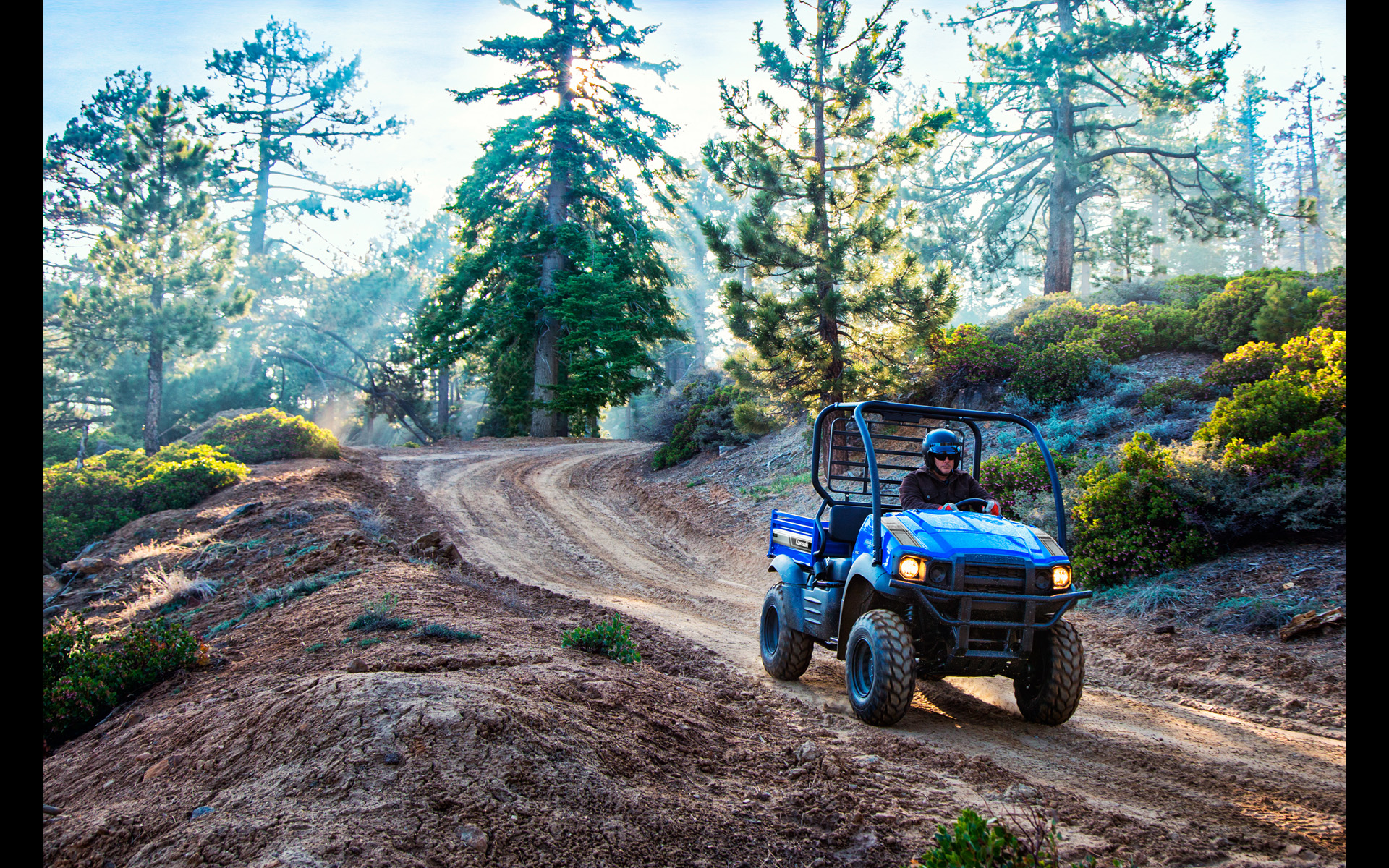 2018 Kawasaki Mule SX 4X4 XC in Asheville, North Carolina