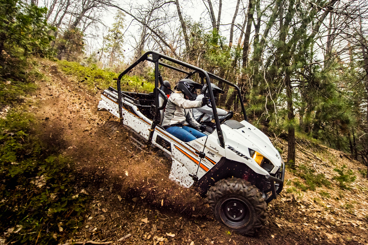 2018 Kawasaki Teryx in Petersburg, West Virginia