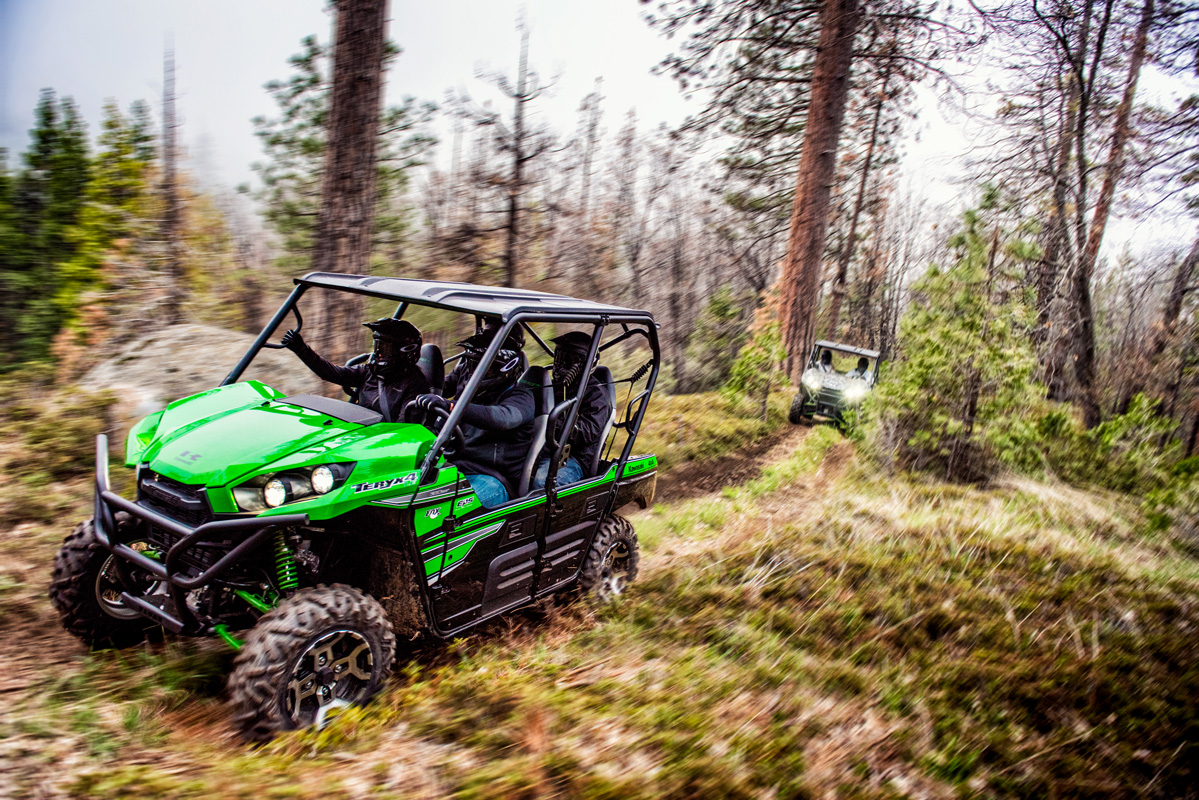 2018 Kawasaki Teryx4 LE in Jamestown, New York
