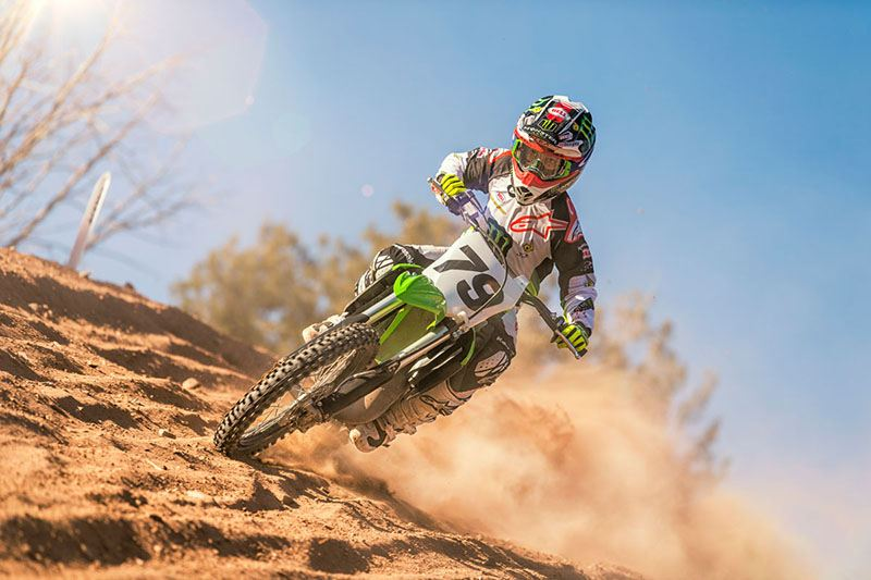 2019 Kawasaki KX 100 in Mount Pleasant, Michigan - Photo 10