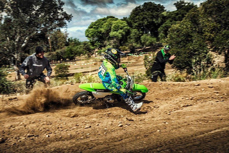 2019 Kawasaki KLX 110 in Redding, California - Photo 8
