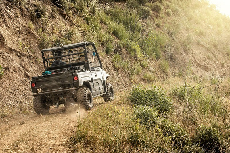 2019 Kawasaki Mule PRO-MX EPS in Kittanning, Pennsylvania