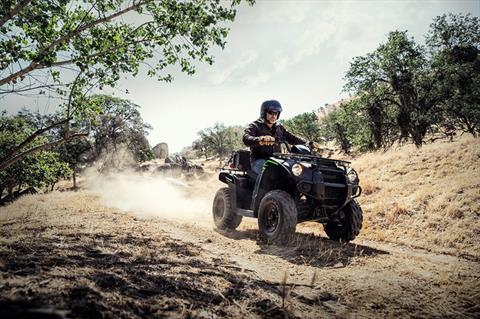 2020 Kawasaki Brute Force 300 in Plano, Texas - Photo 6