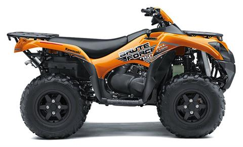 2020 Kawasaki Brute Force 750 4x4i EPS in Fairview, Utah - Photo 1