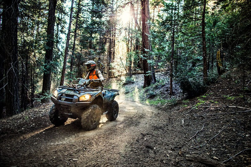 2020 Kawasaki Brute Force 750 4x4i EPS Camo in Sacramento, California - Photo 4