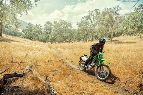 2020 Kawasaki KLX 250 in Santa Clara, California - Photo 7