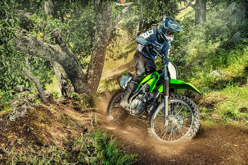 2020 Kawasaki KLX 230R in Greenville, North Carolina - Photo 5