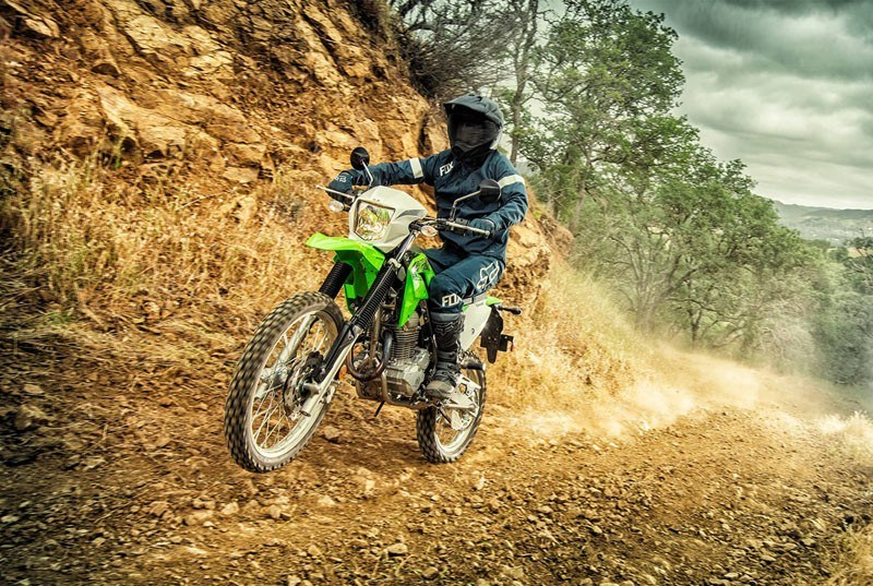 2020 Kawasaki KLX 230 ABS in South Paris, Maine - Photo 8