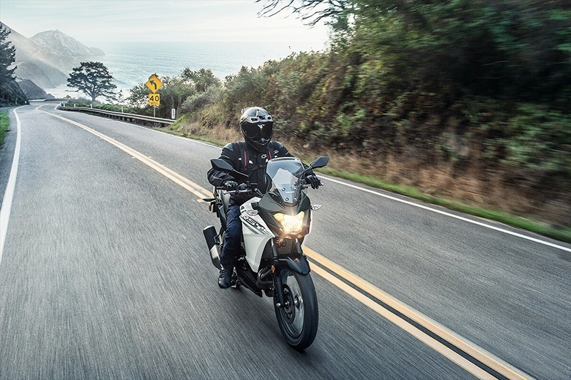 2020 Kawasaki Versys-X 300 in Bennington, Vermont - Photo 6