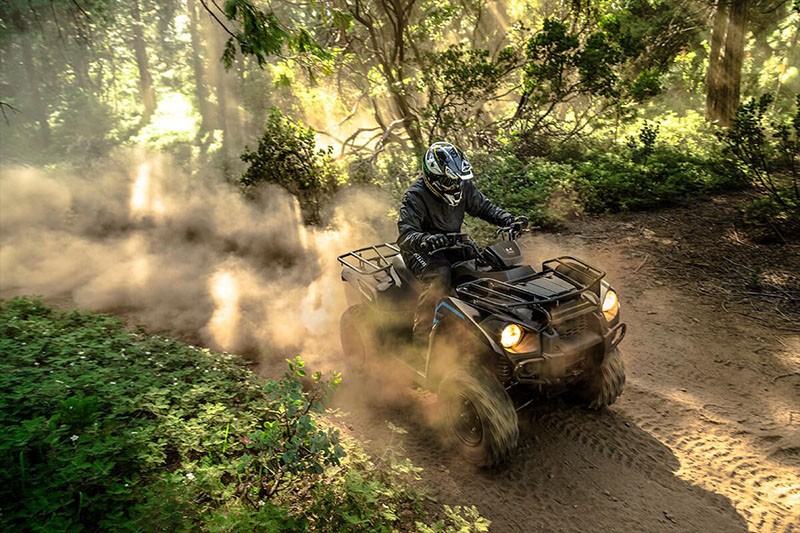 2021 Kawasaki Brute Force 300 in Sacramento, California - Photo 6