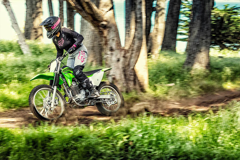 2021 Kawasaki KLX 230R in Mount Pleasant, Michigan - Photo 11