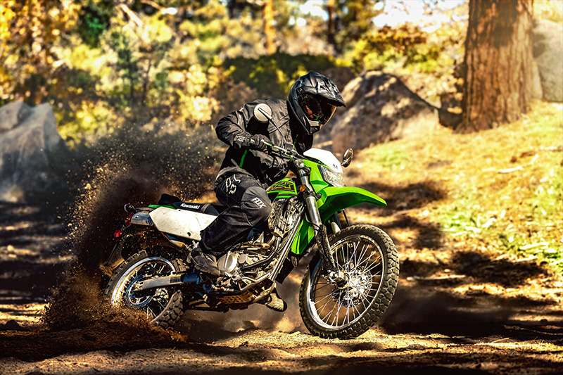 2021 Kawasaki KLX 300 in Everett, Pennsylvania - Photo 6