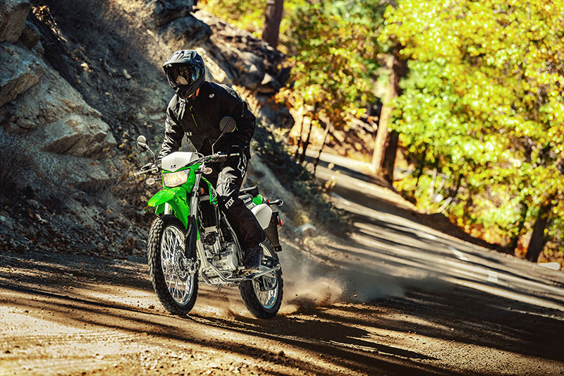 2021 Kawasaki KLX 300 in Howell, Michigan - Photo 9