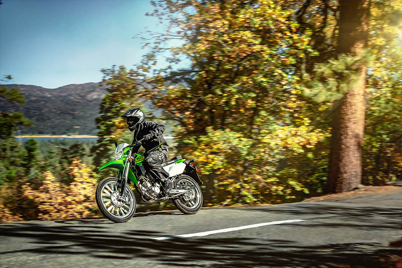 2021 Kawasaki KLX 300 in Orange, California - Photo 13