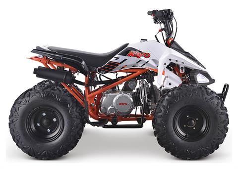 2020 Kayo Predator 125 in Merced, California - Photo 1