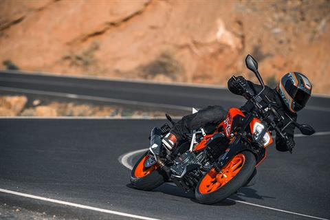 2019 KTM 390 Duke in Trevose, Pennsylvania - Photo 3