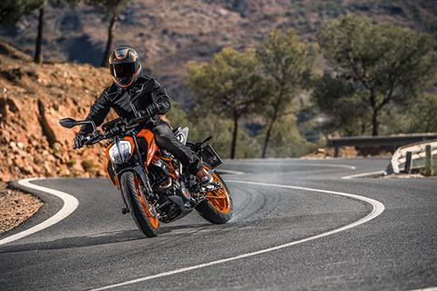 2019 KTM 390 Duke in Olympia, Washington - Photo 4