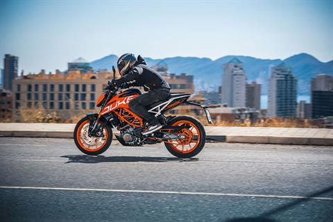 2019 KTM 390 Duke in Olympia, Washington - Photo 5
