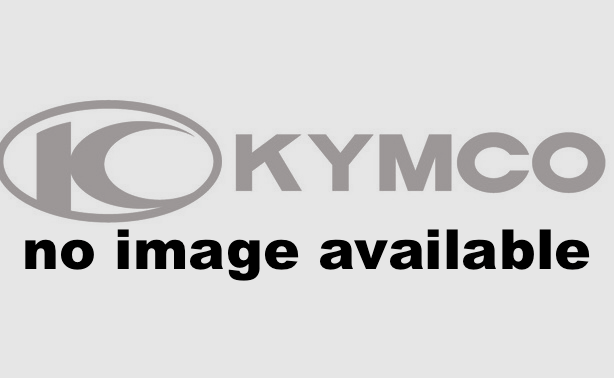 2016 Kymco Mongoose 90S in Cookeville, Tennessee