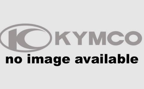2016 Kymco Agility 125 in Gonzales, Louisiana