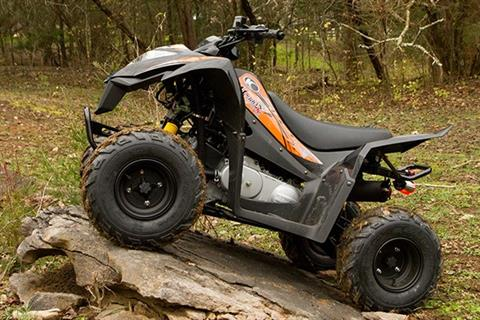 2017 Kymco Mongoose 90S in Adams, Massachusetts