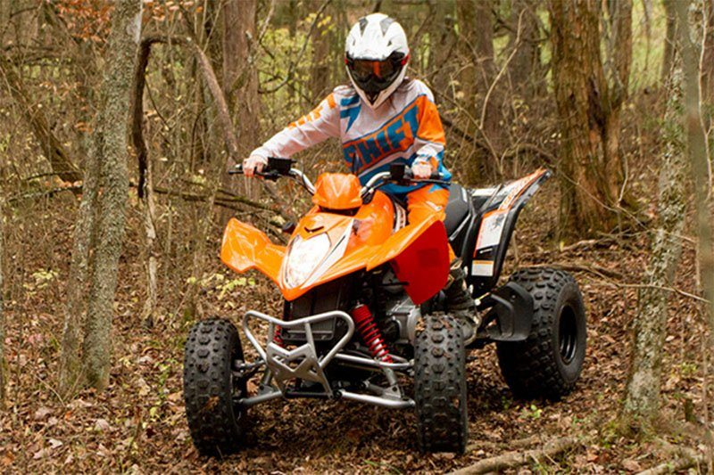 2017 Kymco Mongoose 270 in Tarentum, Pennsylvania - Photo 3