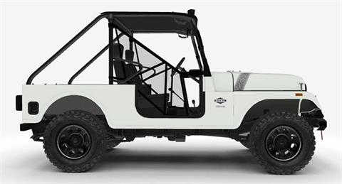 2018 Mahindra Automotive North America ROXOR Limited Edition in Elizabethton, Tennessee
