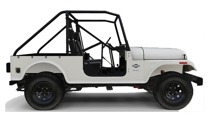 2019 Mahindra Automotive North America ROXOR Offroad in White Plains, New York - Photo 1