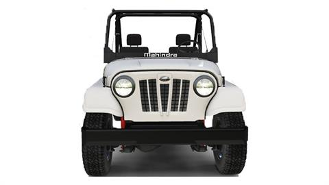 2019 Mahindra Automotive North America ROXOR Offroad in Amarillo, Texas - Photo 12