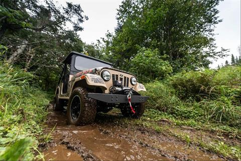2019 Mahindra Automotive North America ROXOR Offroad A/T in Bennington, Vermont - Photo 12