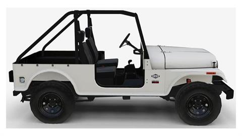 2019 Mahindra Automotive North America ROXOR Offroad A/T in Rexburg, Idaho