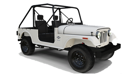 2019 Mahindra Automotive North America ROXOR Offroad in Bessemer, Alabama