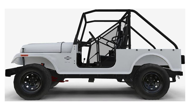 2020 Mahindra Automotive North America ROXOR Offroad in White Plains, New York - Photo 2