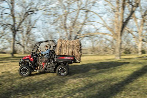 2018 Mahindra Retriever 1000 Gas Standard in Roscoe, Illinois - Photo 11