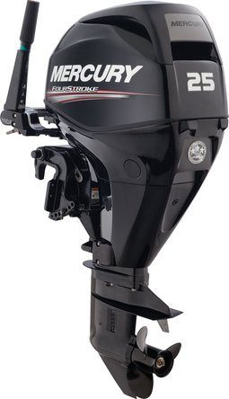 2015 Mercury Marine 25 hp EFI FourStroke 15 in Shaft in Willis, Texas