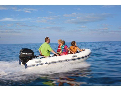 2016 Mercury Marine 25 hp EFI FourStroke (15 in) in Naples, Maine