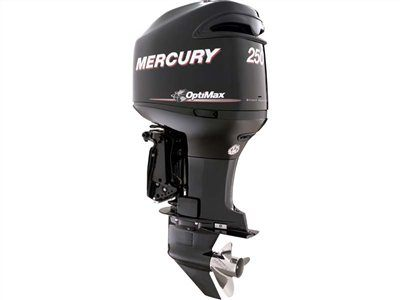 2016 Mercury Marine 250 OptiMax (25 in) in Harriman, Tennessee