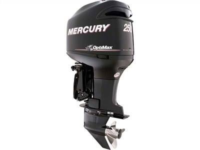 2016 Mercury Marine 250 OptiMax (25 in) in Mineral, Virginia