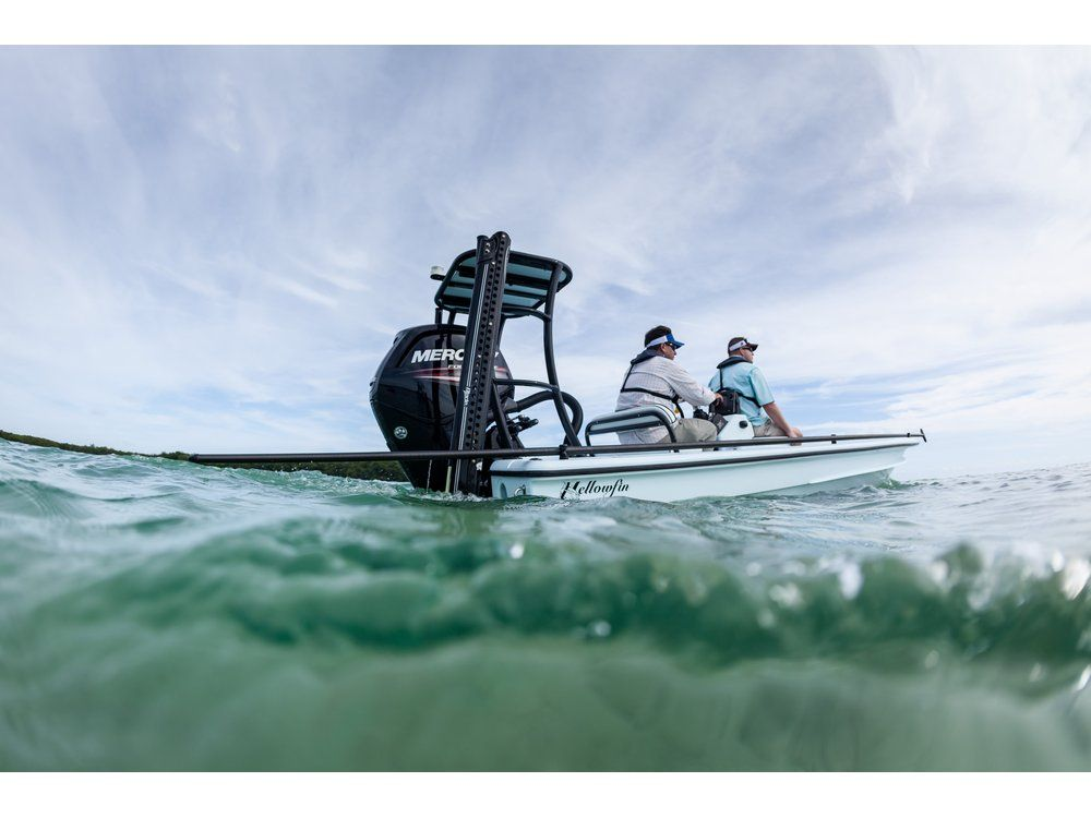 2017 Mercury Marine 115 hp Command Thrust FourStroke in Mount Pleasant, Texas