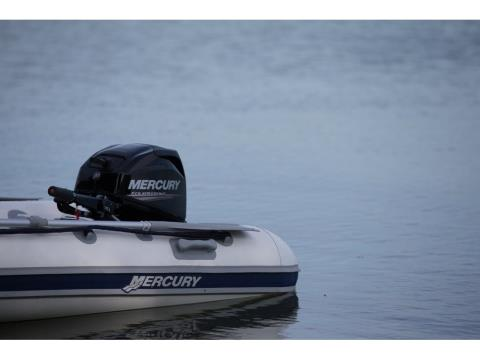 2017 Mercury Marine 20 hp FourStroke in Fleming Island, Florida