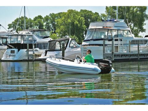 2017 Mercury Marine 50 hp EFI Command Thrust in Manitou Beach, Michigan