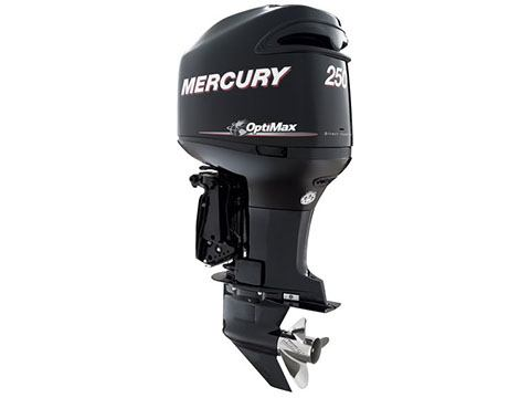 2017 Mercury Marine 250 OptiMax in Center Ossipee, New Hampshire